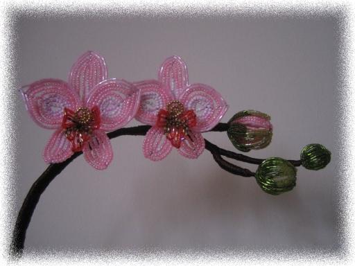 Цветы из бисера орхидея белая